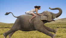 Woman Riding A Galloping Elephant